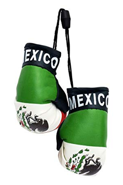 Mexico Flag Mini Boxing Gloves
