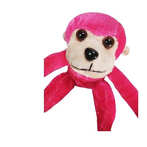 The Little Rascal Monkey