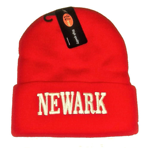 NEWARK Winter Skully Hat