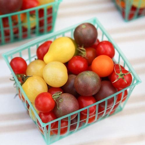 Tomato- Rainbow Cherry Mix