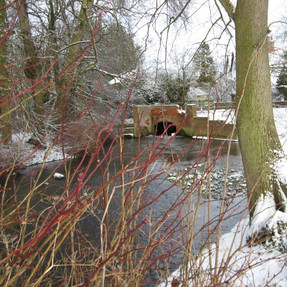 River Thet, East Harling, 6 January 2010