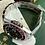 2004 ROLEX GMT Master II 'PEPSI' 16700