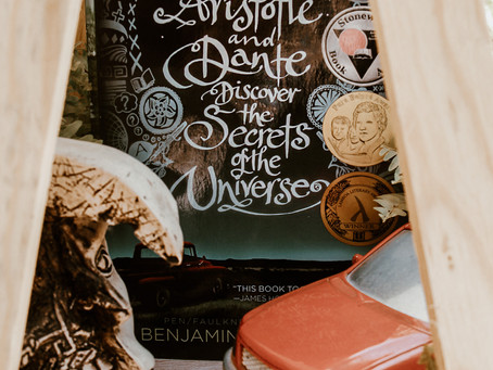 Aristotle and Dante Discover the Secrets of the Universe by Benjamin Alire Sáenz - Book Review