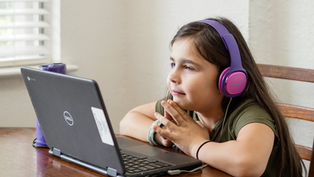 Online Learning: What Have We Learned in the Past School Year