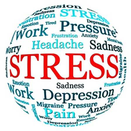 Course: Building Resilience and Stress Management Tools