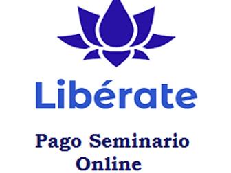 Pago por 1 Seminario Online  - Pago Argentina