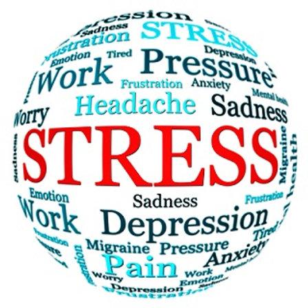 Seminario Online Manejo del Estrés - Pago Argentina