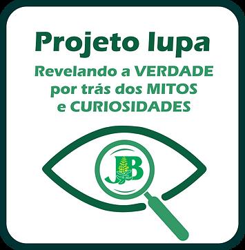 Logo Projeto Lupa.png