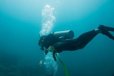 underwater-view-scuba-diver-ixtapa-guerrero-mexico.jpg