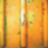 52generando color 4.jpg