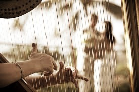 harp hands and couple photo_edited.jpg