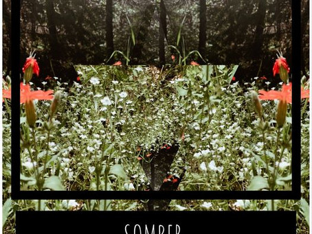 """Staff Music Pick 