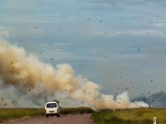 Без огня и дыма: изменения в Правилах противопожарного режима