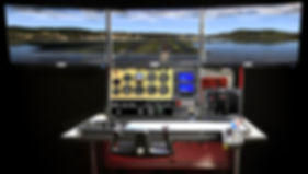FlyThisSim-vx-(2)_edited.jpg