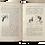 Thumbnail: The Cult of Chiffon, 1902. Digital download.