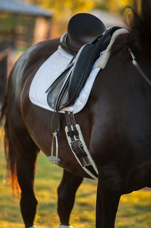 """EquineNZ Wool Lined Dressage Girth 18"""" - 32"""""""