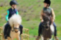 Pony Saddles for sale