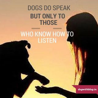 Orhan-Pamuk-—-Dogs-do-speak-but-only-to-those-who-know-how-to-listen..jpg