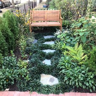 small oasis garden