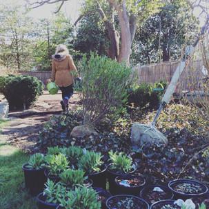 Garden install in progress