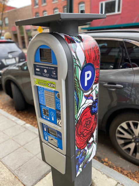 Kellie had the opportunity to work with a wonderful group of master students at Cornell University in the Dept. of Design + Environmental Analysis and Downtown Ithaca Alliance. The students came up with the public art project to create the first wrapped art paystation in downtown Ithaca, featuring an original art piece of mine.  Yesterday the students wrapped the paystation, and now can be seen in downtown Ithaca on S Cayuga Street.