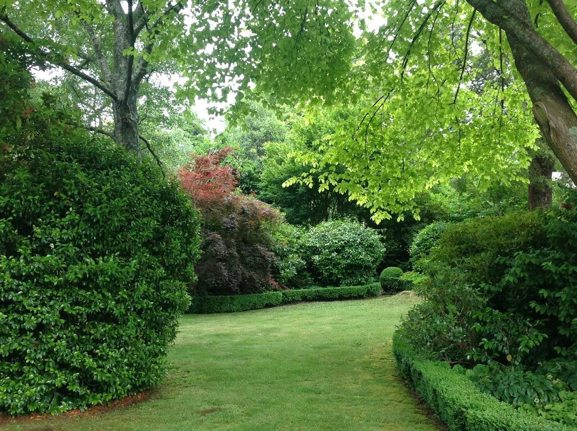 Blandford Gardening5.jpg