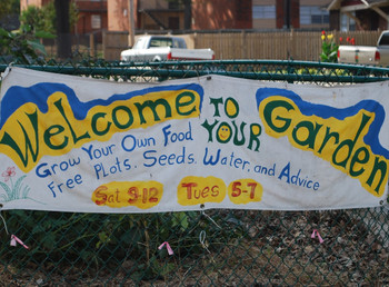 Gardening tools in place of firearms? - Community gardens could be social and economic game changers