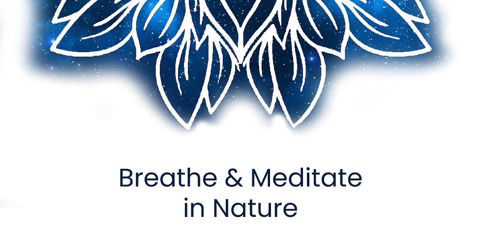 Breathe & Meditate in Nature