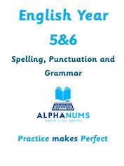 Word endings spelt -cious or -tious