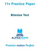 11plus Bitesize Test1