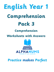 Year 1 Comprehension Pack3