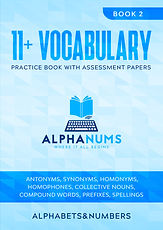 11 Plus Vocabulary Book 2 Practice book with assessment papers