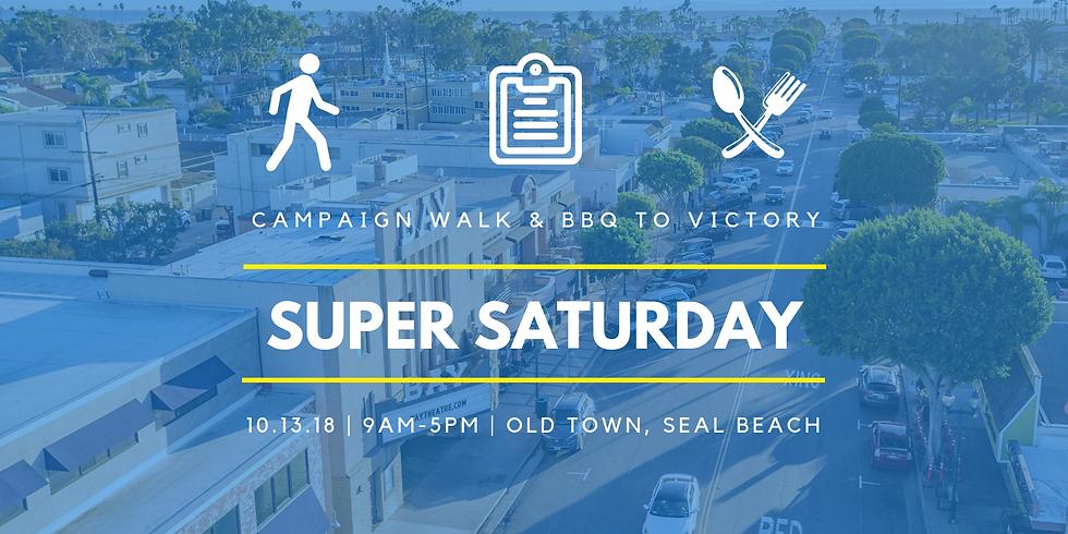 Super Saturday: Campaign Walk & BBQ to Victory!