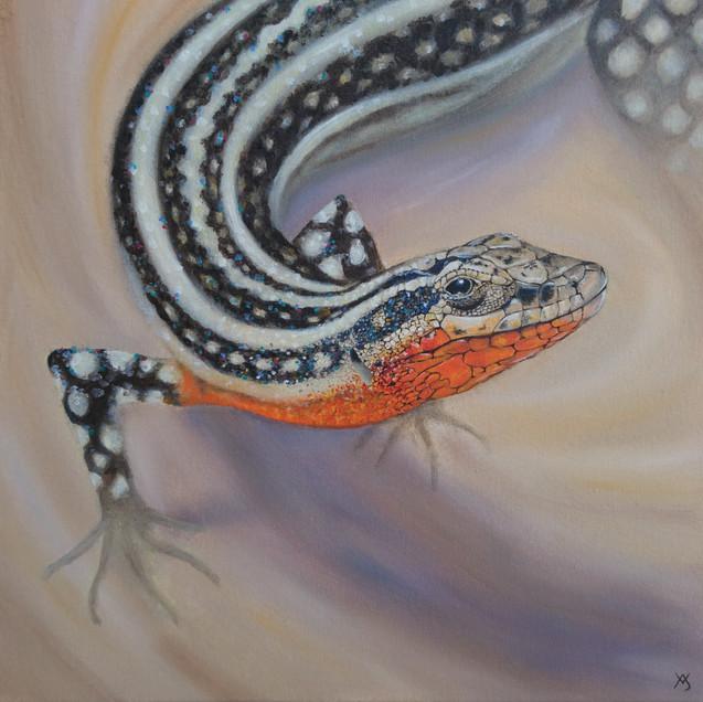 Pelasgian Rock Lizard