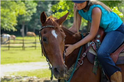 EAP for ADD (Part 4): Horses and Arousal Shifts