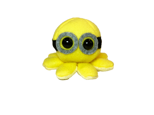 Yellow Goggles Octopus