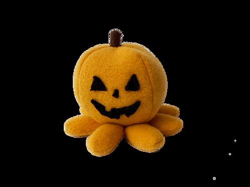 Jack-o-Lantern Octopus
