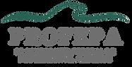 Logo PROFEPA transparente..png