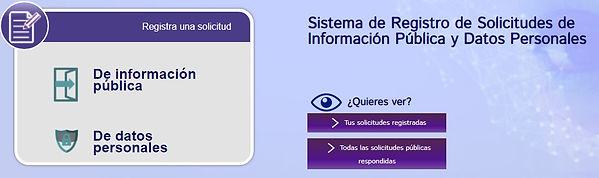 Sistema_de_Registro_de_Solicitudes_de_In