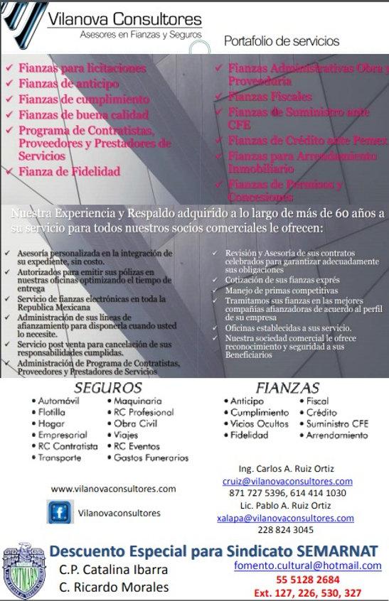 VilanovaConsultores_edited.jpg