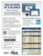 FEA Access at a Glance.jpg