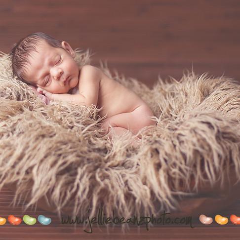 Baby Zeke Newborn Session