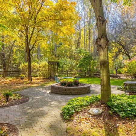 A Backyard Oasis