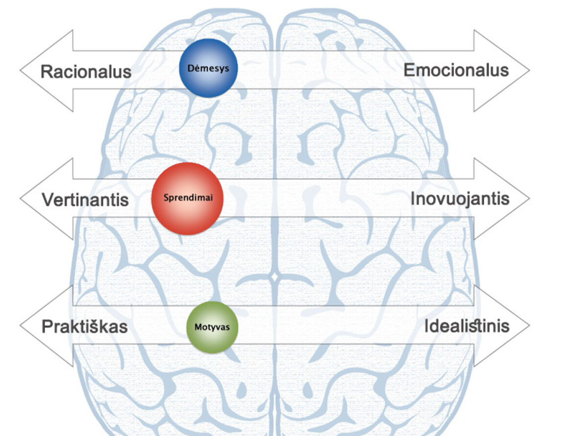 Jūsų smegenų veikimo stilius