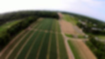 Aerial View corn fields East Marion NY