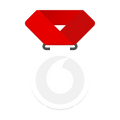 white Vodafone medal with red lanyard.png