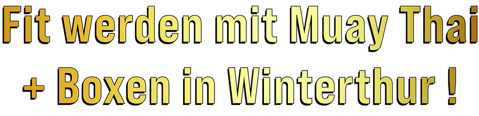 Fit werden ! - Irjad Gym Winterthur - Mu