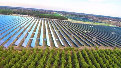 Washington Millfield Solar