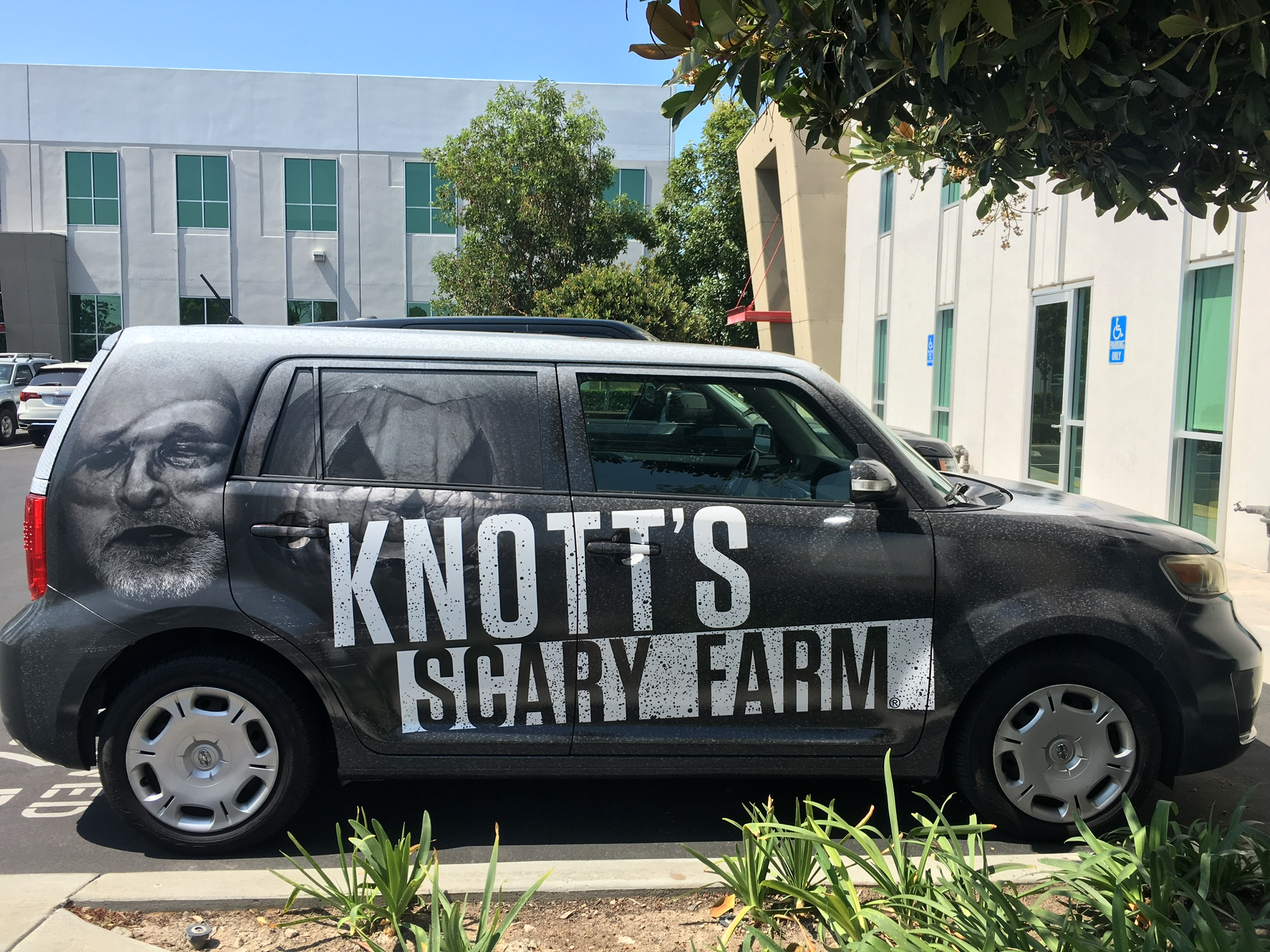 Knotts car wrap