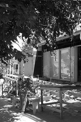 ANA_VITRO_KORUI_CAMELIA_17A_edited.jpg